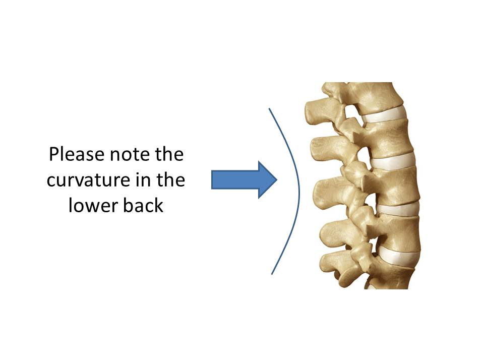 Protect Your Back With A Hip Hinge 3d Spinal